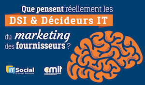 Infographie_DSI_Decideurs_small